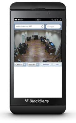 Blackberry DVR Surveillance System Viewer