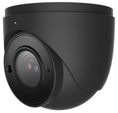 Gray Dome Security Camera