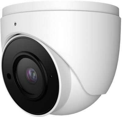 White Dome Security Camera