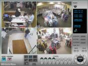 DVR Viewer - 4 Camera View